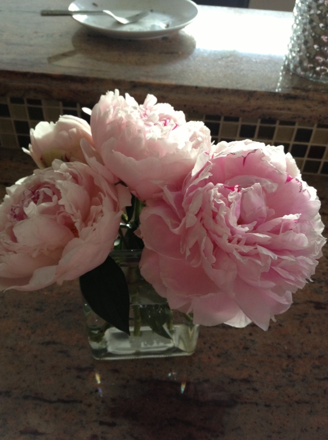 Peonies from our garden