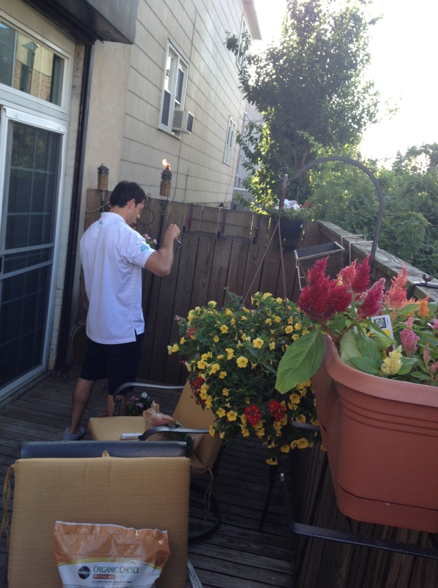 Adding flowers to our back porch